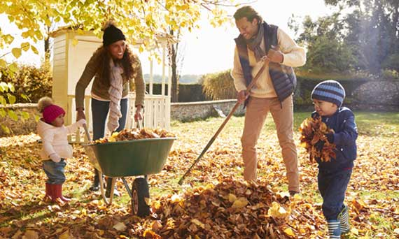 family of four rakes leaves in their yard